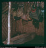 """Inside clinic house at Giimanda. Empty billums during church service. Note hollowed log, wh..."