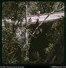 """The Bridge over the Laname - built at last, but no side rails! Elizabeth and Neville (from ..."