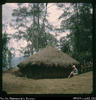"""Maisie - on way to caves. Kanyimareta and Hagen range in distance. Round man's house, ..."
