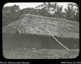 Thatched local style hut
