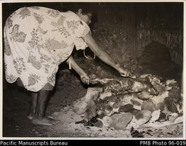 Woman cooking pig on hot stones
