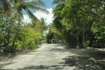 Pacific road