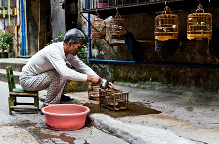 A man cleans bird cages in Guangzhou's Old Town. Photo by Sjekster on flickr.